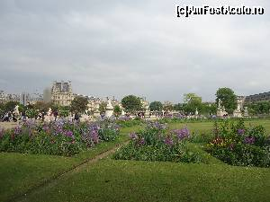 P02 [MAY-2014] Jardin des Tuileries, Paris
