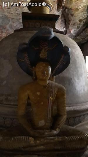 """P30 <small>[FEB-2019]</small> de prin interior, o poveste interesanta aici si anume, se spune ca in timp se Budha se ruga si era in nirvana a inceput sa ploua, atunci o cobra a venit si l-a acoperit pentru a putea sa se roage in liniste.  » foto by roth  -  <span class=""""allrVoted glyphicon glyphicon-heart hidden"""" id=""""av1067150""""></span> <a class=""""m-l-10 hidden"""" id=""""sv1067150"""" onclick=""""voting_Foto_DelVot(,1067150,8783)"""" role=""""button"""">șterge vot <span class=""""glyphicon glyphicon-remove""""></span></a> <a id=""""v91067150"""" class="""" c-red""""  onclick=""""voting_Foto_SetVot(1067150)"""" role=""""button""""><span class=""""glyphicon glyphicon-heart-empty""""></span> <b>LIKE</b> = Votează poza</a> <img class=""""hidden""""  id=""""f1067150W9"""" src=""""/imagini/loader.gif"""" border=""""0"""" /><span class=""""AjErrMes hidden"""" id=""""e1067150ErM""""></span>"""